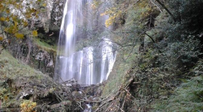 Cascada de Aguasalíu – Puente Vidosa