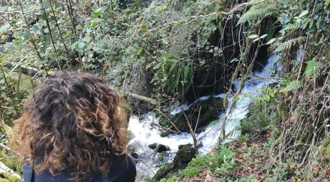 Senda al nacimiento del rio Obaya